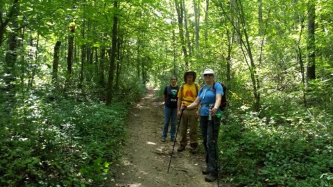 Brighton Recreation Area Hike
